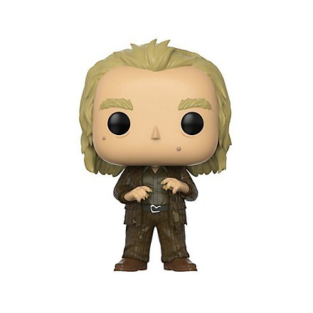 Harry Potter - Peter Pettigrew Funko POP! Figur