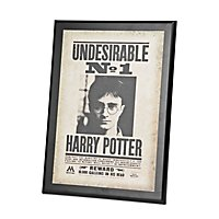 Harry Potter - Steckbrief No.1