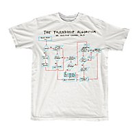 The Big Bang Theory - T-Shirt The Friendship Algorithm
