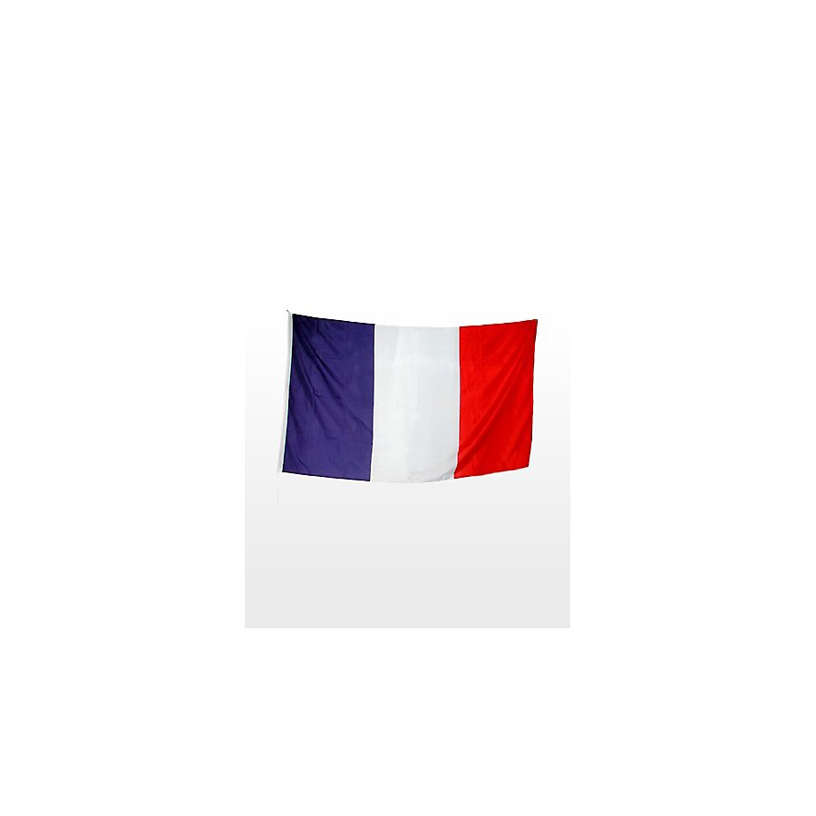 Fahne Frankreich Fanartikel