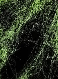 Spider Web green Black Light 100 g
