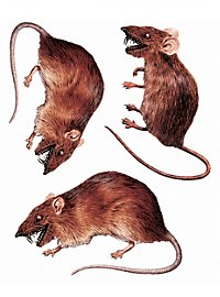 3D Rat Sticker Set Halloween Decoration