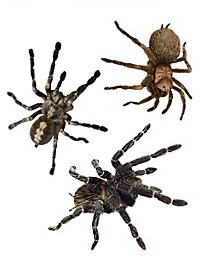 3D Spinnen Sticker-Set Halloween Deko