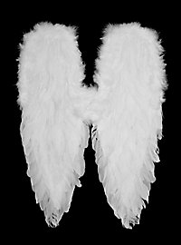 Ailes en plumes blanches