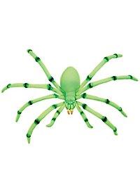 Araignée géante fluo