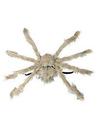 Araignée géante grise à accrocher