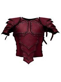 Armure de monteur de dragon avec spallières en cuir