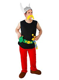 Asterix Costume