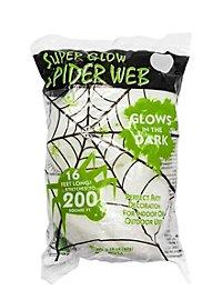 Aufspannbares Glow in the Dark Spinnennetz