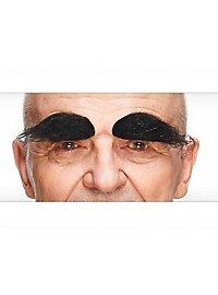 Augenbrauen Ernest
