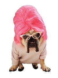 Beehive Hundekostüm