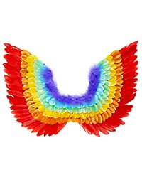 Bird wings rainbow
