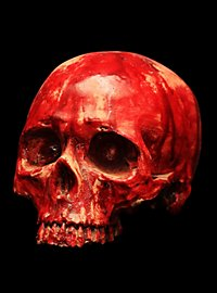 Bloody Skull Decoration