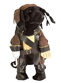 Captain Jack Dog Costume