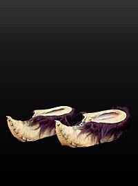 Chaussures de gobelin
