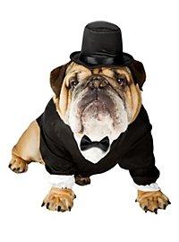 Classy Gent Dog Costume