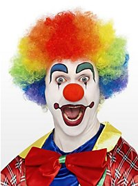 Clown Wig rainbow