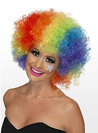 Clown Wig rainbow