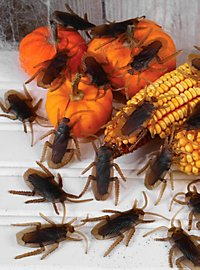 Cockroaches Decoration