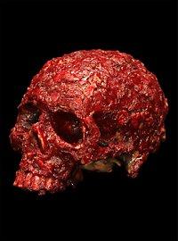 Décoration Crâne couvert de croûtes