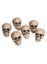 Décoration d'Halloween 6 têtes de mort dans un filet