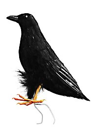 Décoration d'Halloween Corbeau noir