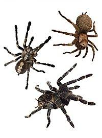Décoration d'Halloween Kit d'autocollants araignées 3D