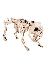 Décoration d'Halloween Squelette de chien