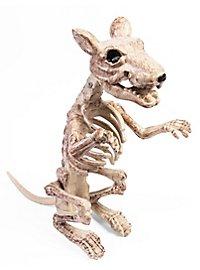 Décoration d'Halloween Squelette de rat