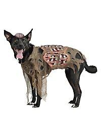 Déguisement de zombie pour chien
