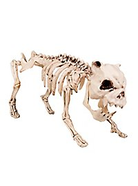 Dog Skeleton Halloween Deco