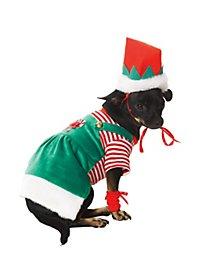 Elfe de Noël Déguisement de chien