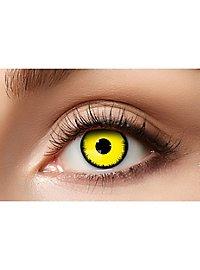 Gelber Engel Kontaktlinsen