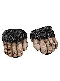 Gorilla-Füße