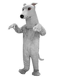 Greyhound Mascot