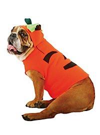 Halloweenkürbis Hundekostüm