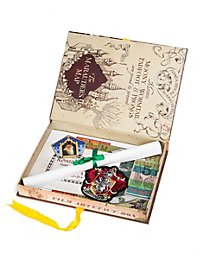 Harry Potter Ron Weasley Artefakt Box