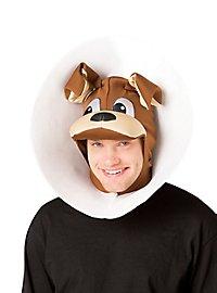 Hund mit Halskragen Kopfbedeckung