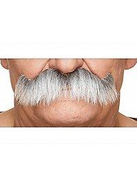 Kaiserbart Schnurrbart