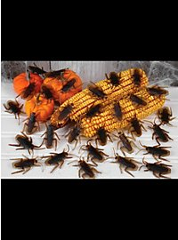 Kakerlaken Dekoration