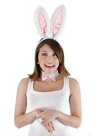 Kit d'accessoires de lapin