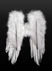 Kleine Federflügel weiß