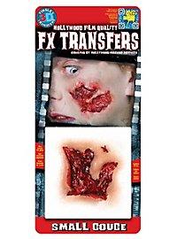 Kleine Fleischwunde 3D FX Transfers