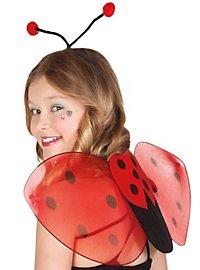 Ladybird accessory set