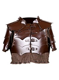Leather Armor Assassin brown