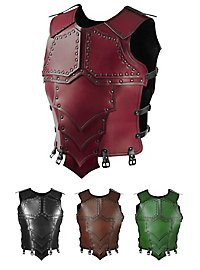 Leather Armour - Dragonrider