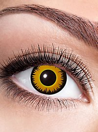 Leo contact lens with diopters