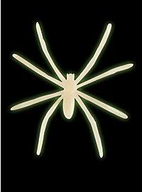 Leuchtende Spinnen