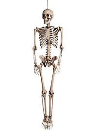 Life-Size Skeleton Hanging Decoration