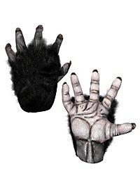Mains de chimpanzé noires